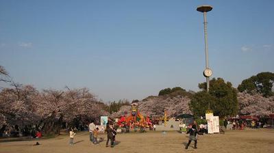 20%公園全景.JPG